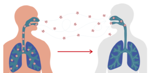 Illustration of how a virus spreads